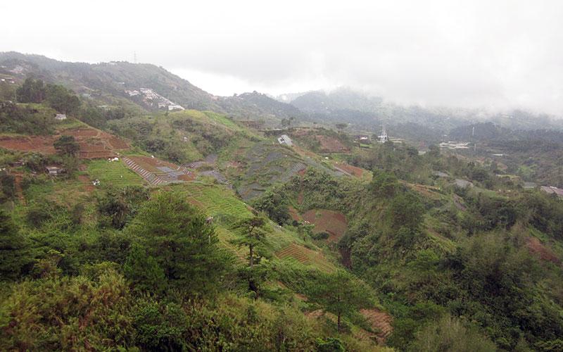 フィリピン留学 HELP LONGLONG - 校舎からの眺め