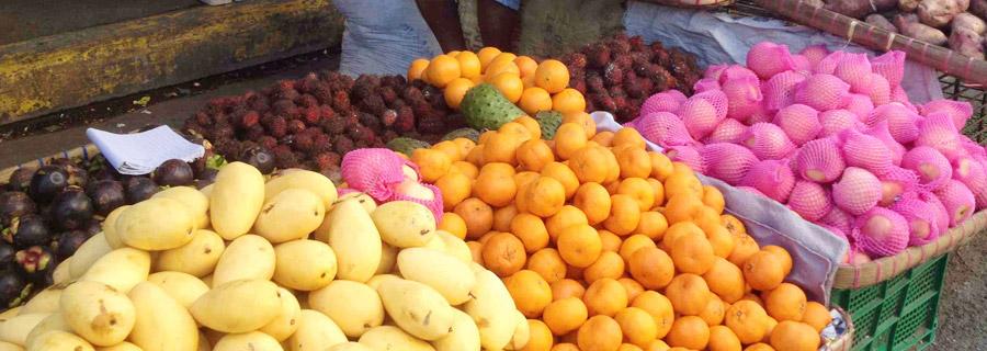 フィリピンの食文化-果物