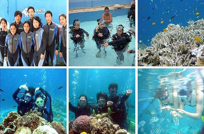 フィリピン留学 JIC CEBU - 校長運営のダイビングショップ