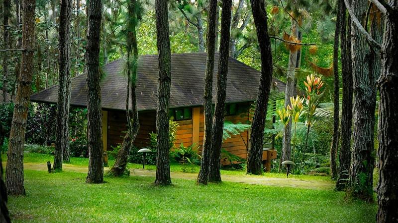 約40ヘクタルの広大な敷地には自然を満喫できるさまざまなアクティビティがあります。